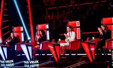 The Voice: La Tournée du Fauteuil 2015